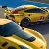 Race GT 17