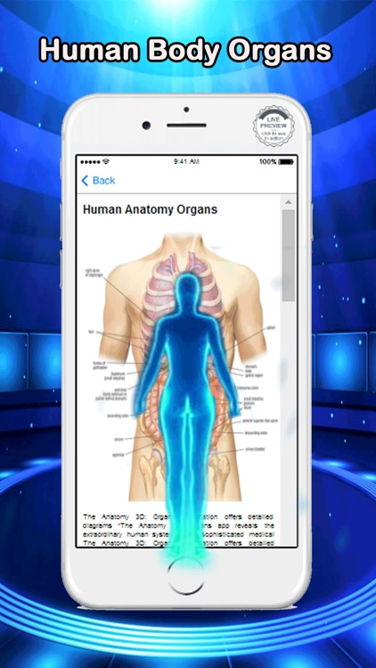 Anatomy Human Body Organs by Hasyim Mulyono