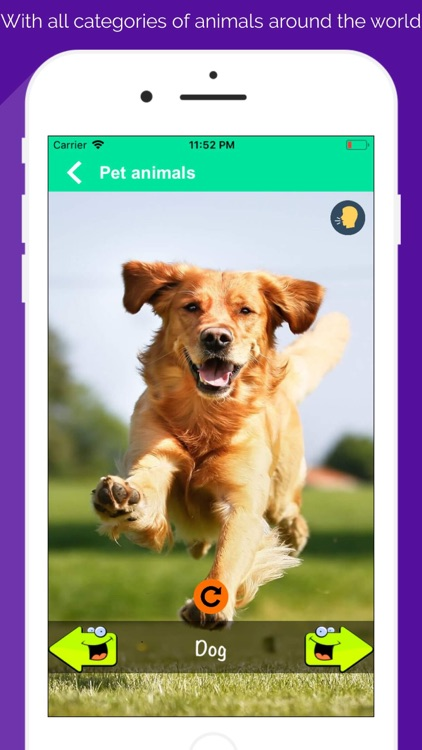 150+ Animal Sounds Lite screenshot-3