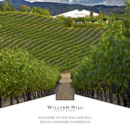 William Hill Estate Vineyard Experience