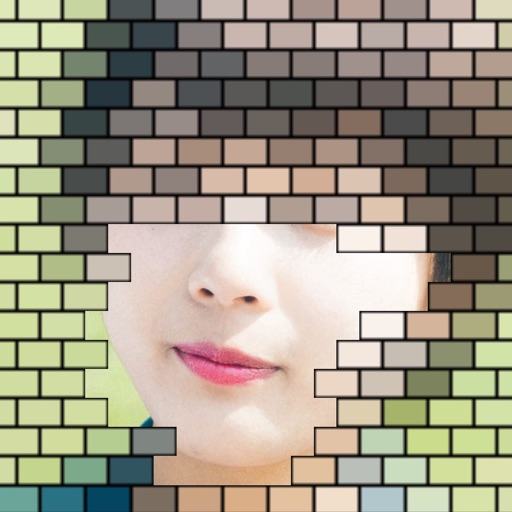 Brick Mosaic icon