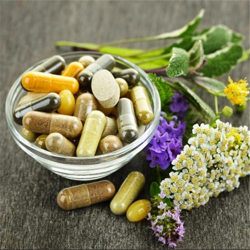 Organic Medicinal Herb:Ultimate Guide