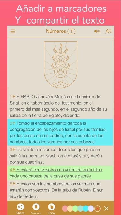 RVA Antigua Spanish Bible (Biblia Español) screenshot-4