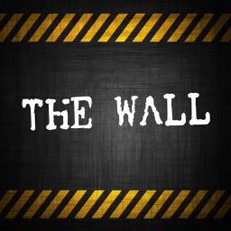 Brain wall