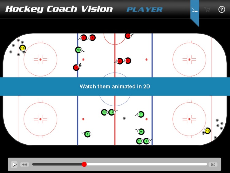 Hockey Coach Vision - Player