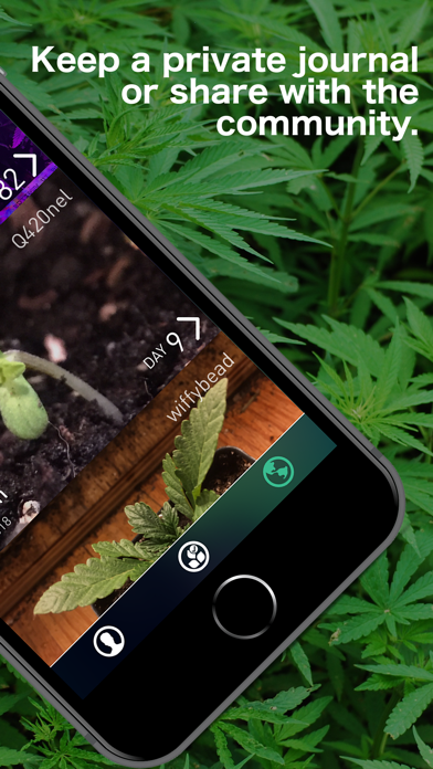 bud - Grow Journal & Community screenshot two