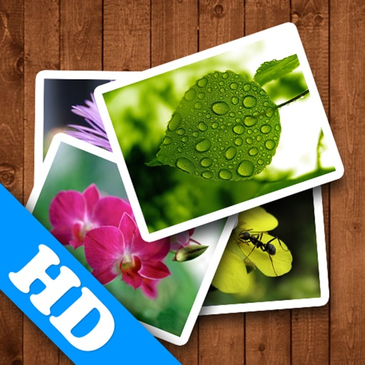 Spring WP HD icon