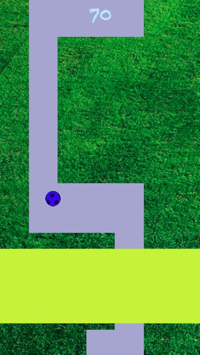 Line Roll - Premium screenshot 4