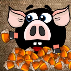 Activities of Piggy for Nuts - Physics Puzzle Game
