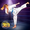 Karate Kung Fu Fighter Girls