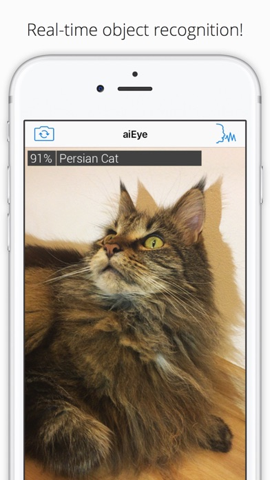 aiEye - Real time object recognition Screenshot