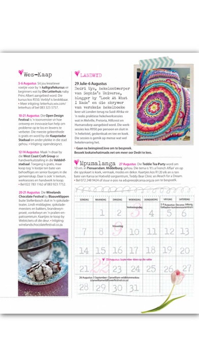 Idees-tydskrif, Zinio Pro — iPad Magazine