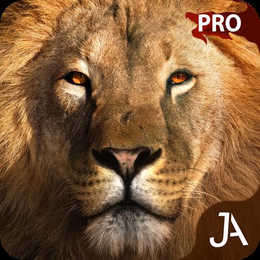 Safari: E-Pro