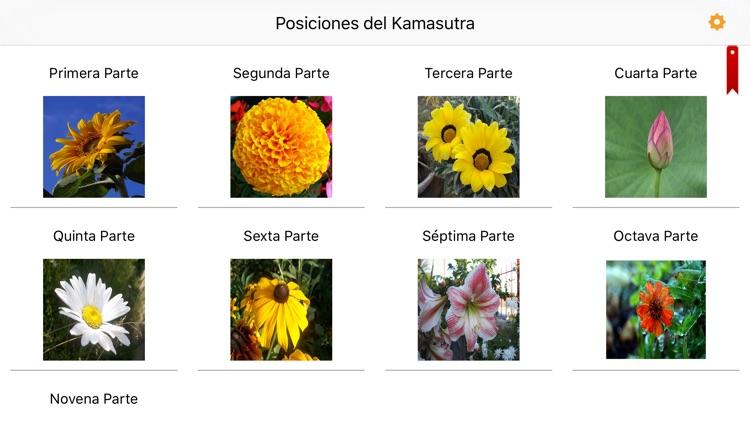 Posiciones del Kamasutra – AudioEbook