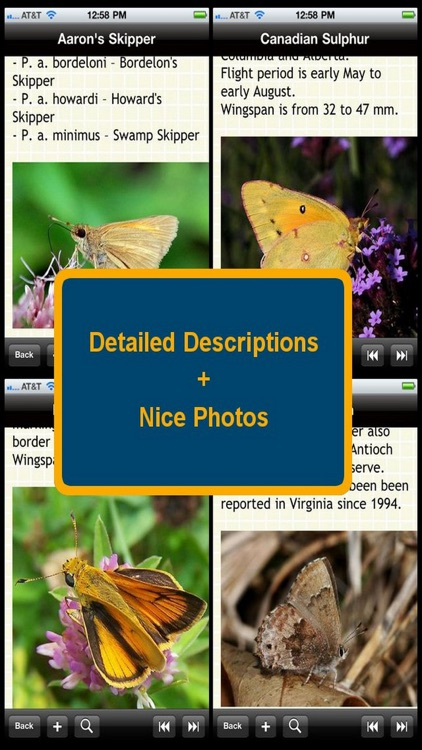 US Butterfly Bible screenshot-1