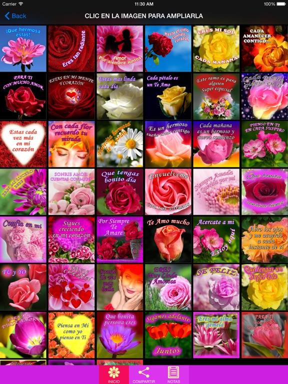 Frases de Amor con Rosas-ipad-1