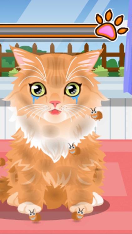Pet Care Salon