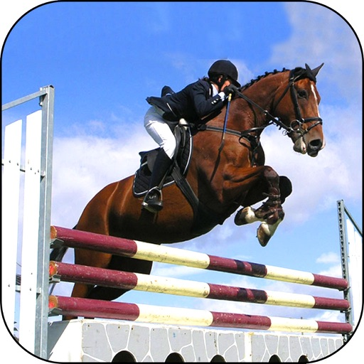 Horse Racing Derby : 3D Race Quest Free