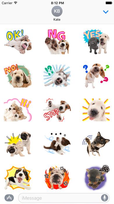 Sweety Dog Lover screenshot one