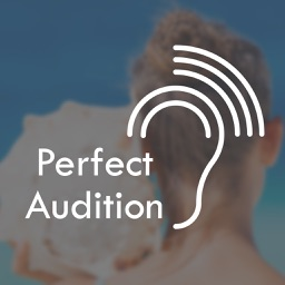 Perfect Audition