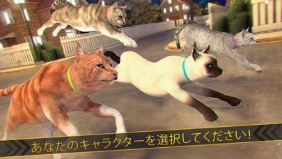 マイ ねこ レース ワールド 3d ネコ 動物 あつめ 暇つぶし ゲーム紹介画像3