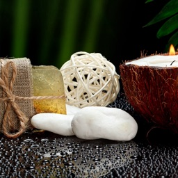 Natural Soap Making Guide:Herbal,Vegetable