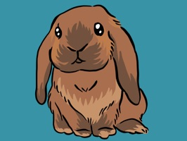 Say something special with these super-adorable Kiku the Mini Lop stickers