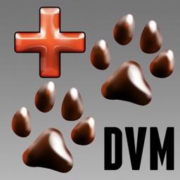 DVM Calc