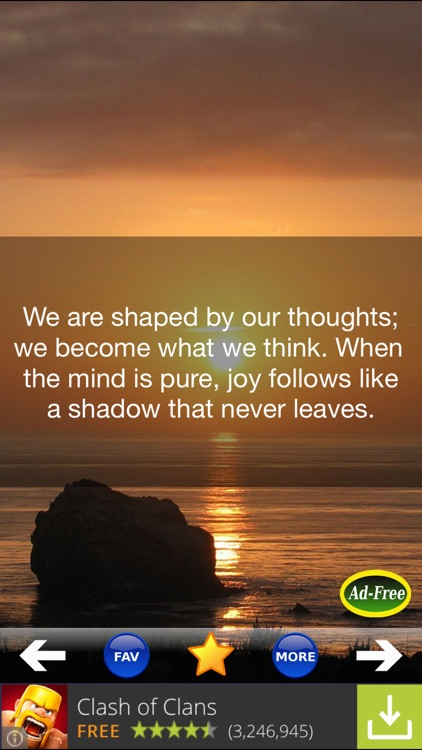 Buddha & Buddhism Quotes 500!