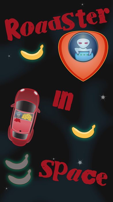 Roadster In Space Screenshot 1