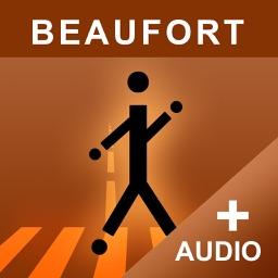 Historic Walking Tour of Beaufort, SC - Premium