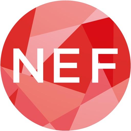NEXT EINSTEIN FORUM (NEF)