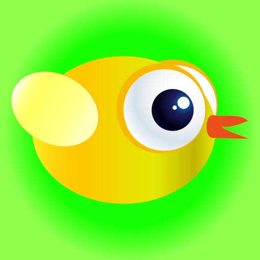 Little Chicken - Fly like a bird