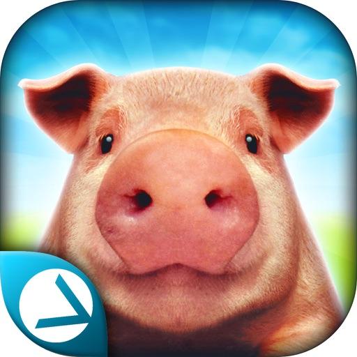 Pig Simulator 2015