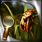 La isla del tesoro - El insecto dorado - Extended Edition - Juego de objetos ocultos icon