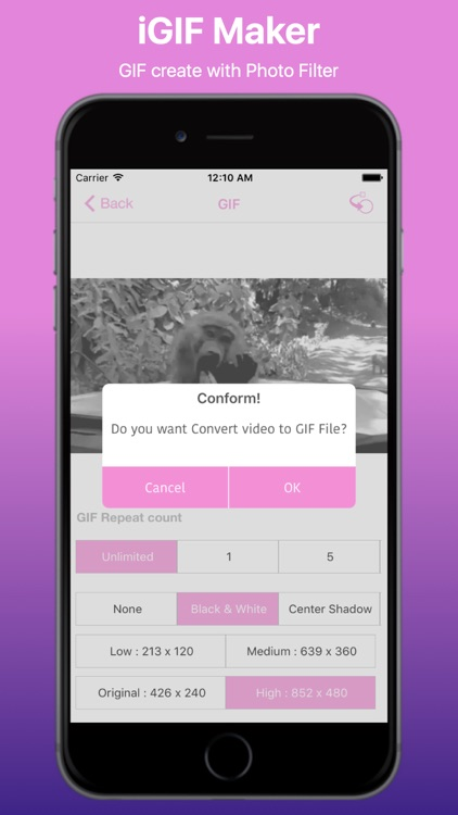 Video to GIF Converter Pro