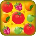 fruits magnétiques: juteuse éclaboussures de fruits icon