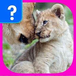 What's The Baby Animal? - The Cutest Animal Picture Word Trivia Game for EVERYONE!