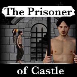 The Prisoner of Castle