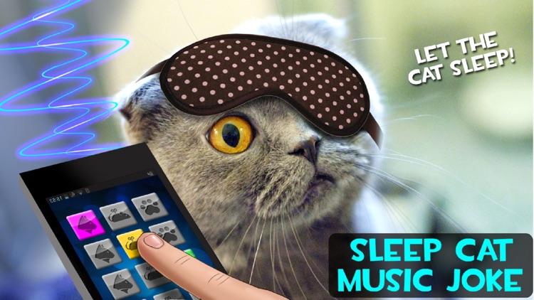 Sleep Cat Music Joke