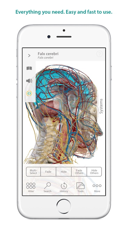 Human Anatomy Atlas – 3D Anatomical Model of the Human Body screenshot-0