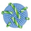 ラメラ美容法 . 肌に浸透する特許取得フェース生コラーゲン