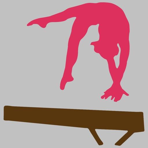 Gymnastics Academy 2016
