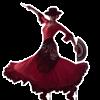 Flamenco Dance Steps - Anthony Walsh