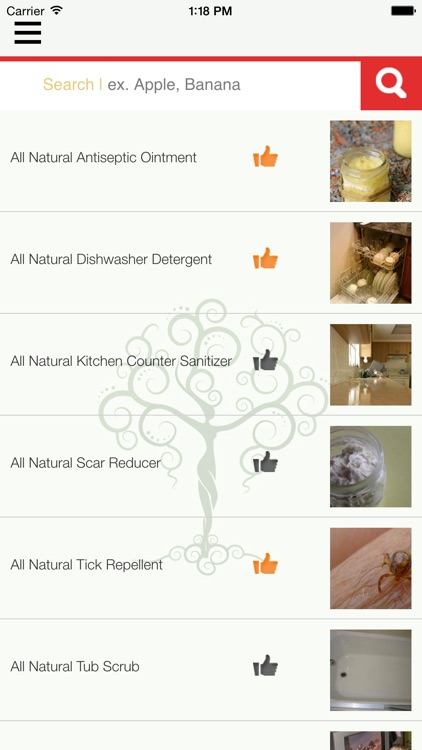 Natural Goddess DIY Homemade Green Beauty, Home, Cleaning, Body, Hair, Skin, Health & Pets Recipes