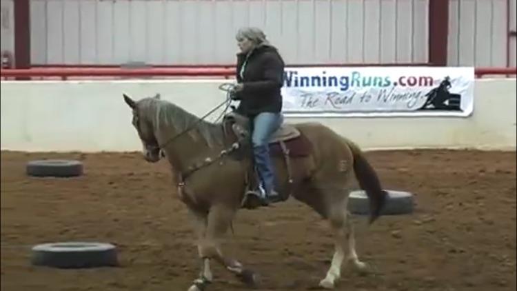Horse Training Techniques screenshot-3