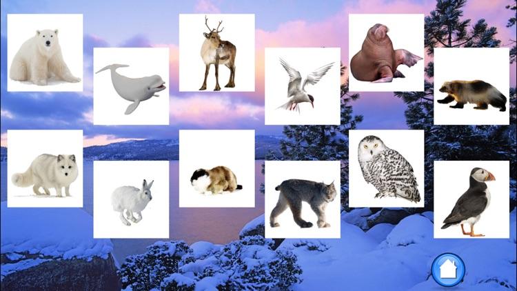Animals North