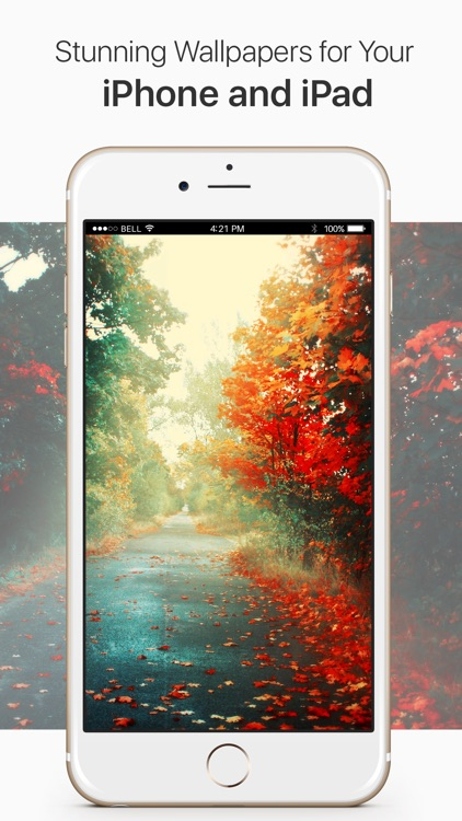 Wallpapers++ The best free wallpapers around