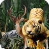 Angry Tiger Multi Player : Simulator Reviews
