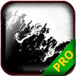 PRO - Soma Game Version Guide